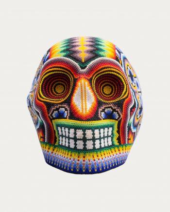 pi_project_crane_mexicain_couleur_3