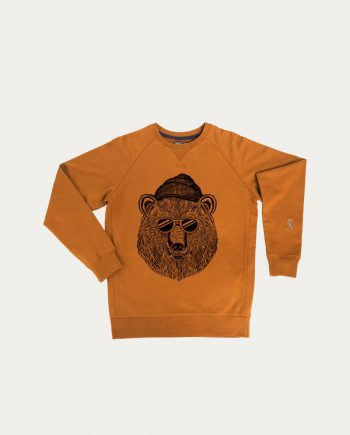 stepart_sweat_bear_and_sun_camel