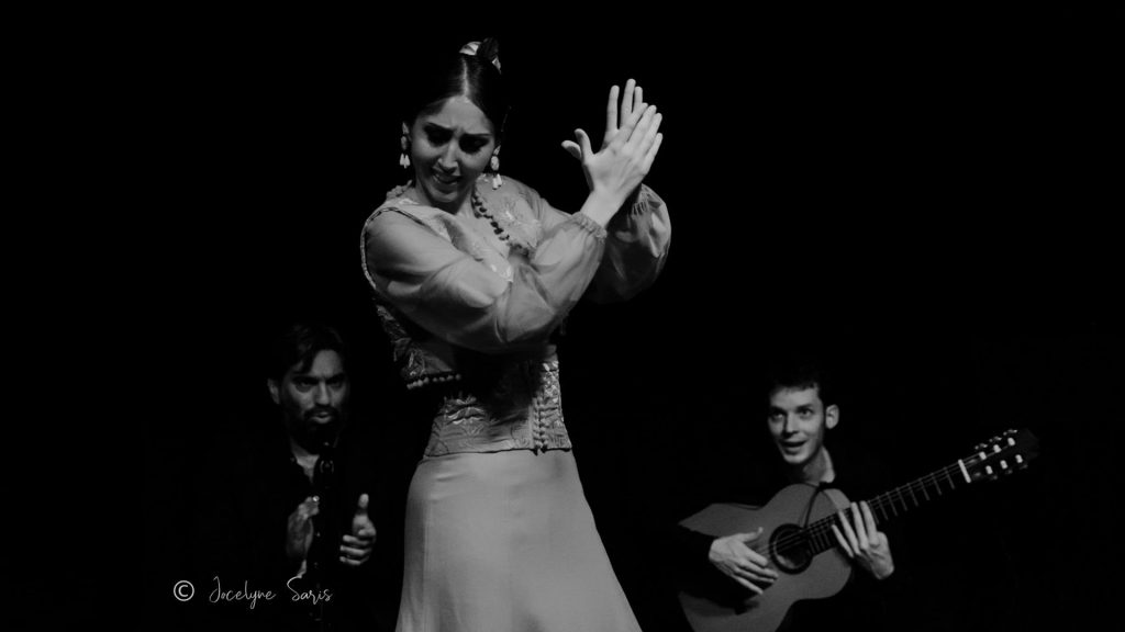 tablao_flamenco_tonsor_cie_espagne_concert_envie_toulouse